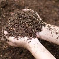 22152359_soil small