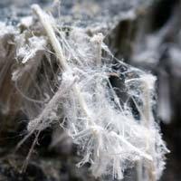 24174143_asbestos3
