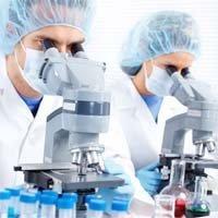 24213357_biotech4