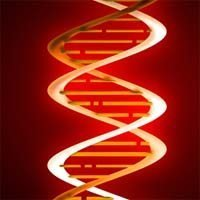 red_dna