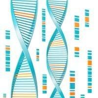 27215413_DNA8