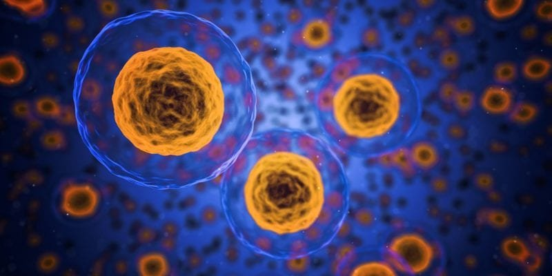 genetic-based cancer treatment for targeted mesothelioma therapy