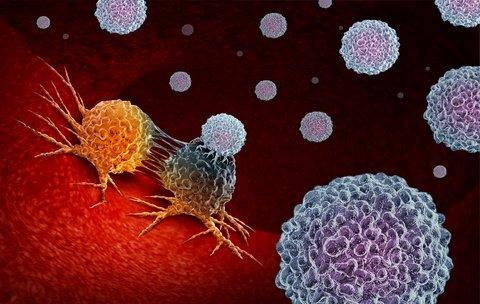 mesothelioma immunotherapy response