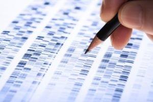 gene signature for mesothelioma