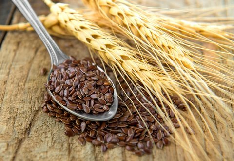 prevent malignant mesothelioma with flaxseed compound