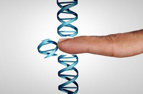 Genes impact mesothelioma survival