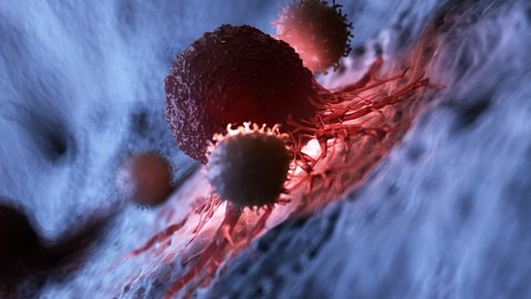 dendritic cell therapy for mesothelioma