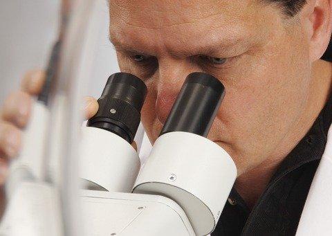 pathological diagnosis of mesothelioma