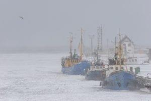 mesothelioma in seafarers