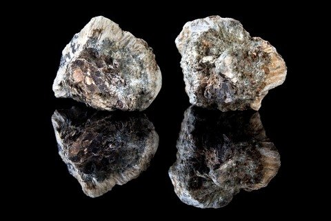 asbestos raises mesothelioma risk
